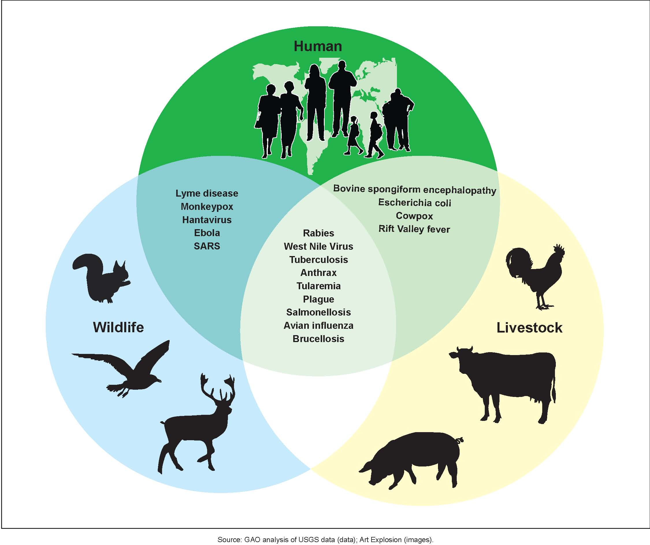 Examples of Zoonotic Diseases and Their Affected Populations